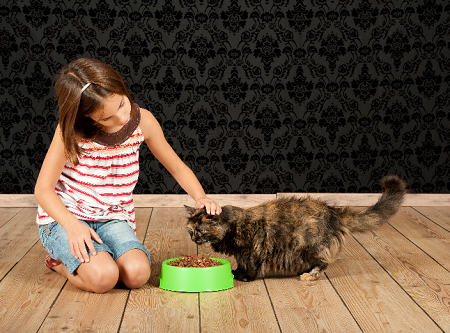 Safe Pets Food