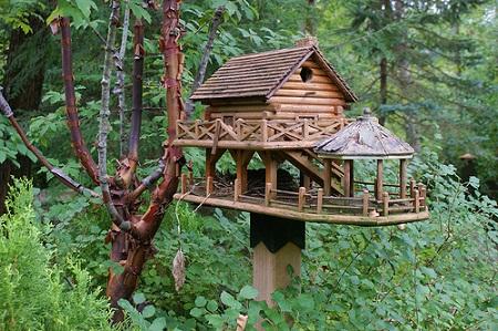 Bird House 10