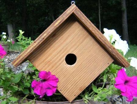 Bird House 20