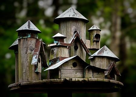 Bird House 21