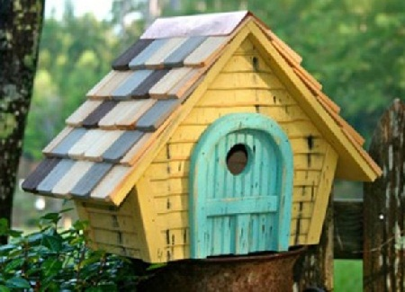 Bird House 23