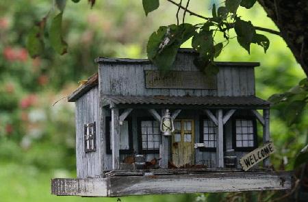 Bird House 24