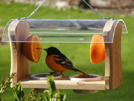 Bird House 27
