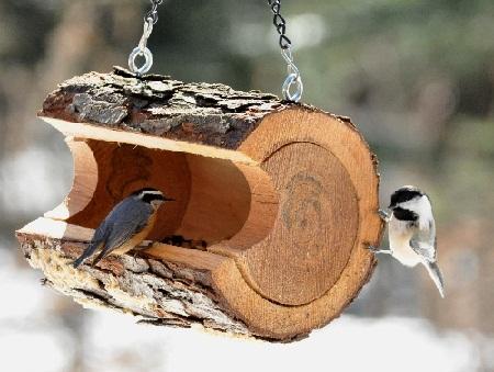 Bird House 28