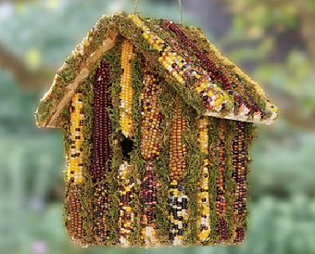Bird House 32