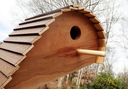 Bird House 37