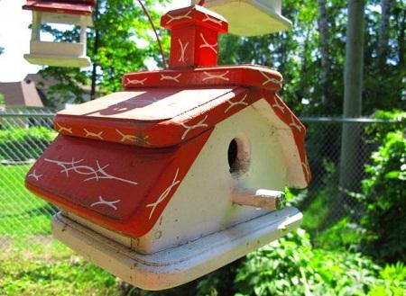 Bird House 42