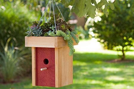Bird House 8