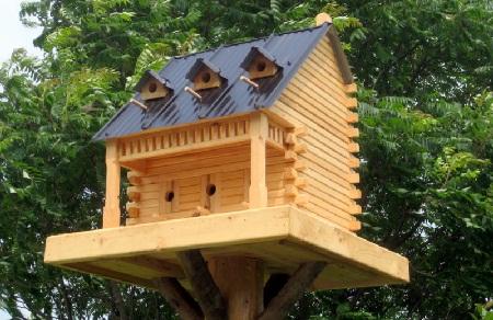 Bird House 9