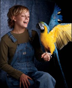 Pet Birds For Your Kids
