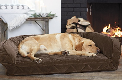 Orvis pet products - Dog Beds