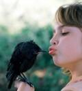 Top 10 Best Birds for Kids