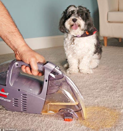 House-Cleaning-Tips-for-Pet-Owners