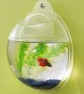 Cheap Fish Tank Accessories