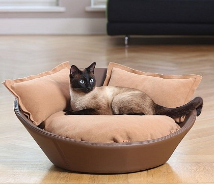 Luxury Pet Accessories