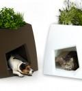 Modern Pet furniture