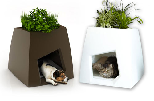 Modern Pet furniture