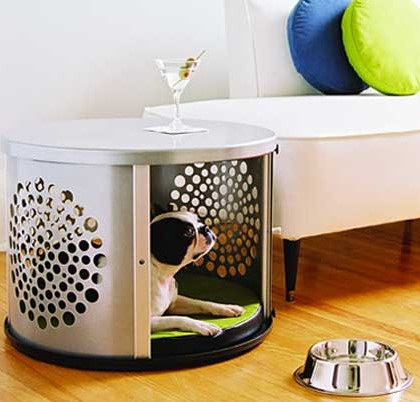 Best Pet Furniture for Dogs