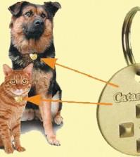 Pet Protector – An Effective Anti-Parasitic System