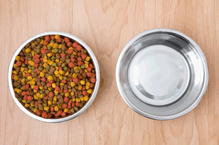 FDA Finally Apply the Color Rules for Pet Food