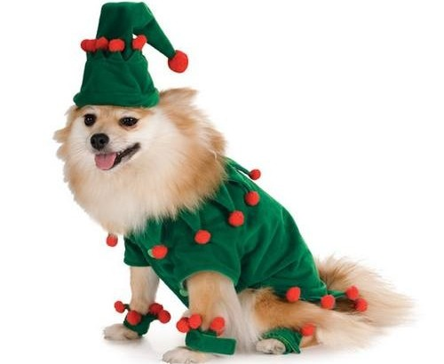 Dog Elf Christmas Costume