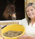 The Rules of Feeding Your Horse