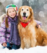 Protect Dogs From Winter