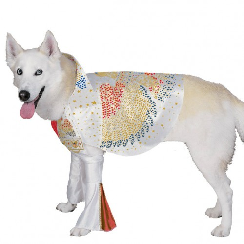 Big Doggie Halloween Costume