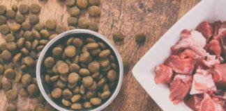 Pet Homemade Dog Food