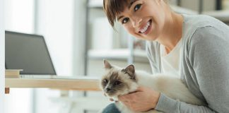 How Can Cats Reduce Stress and Improve Moods