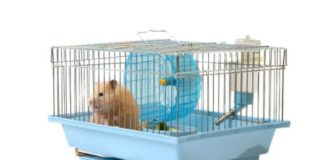 How do you make a rat cage at home