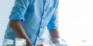 how do you set up a tropical fish tank
