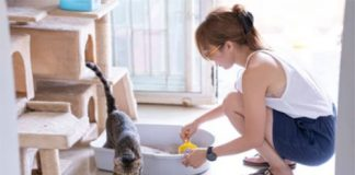 What is the best way to clean a cat litter box